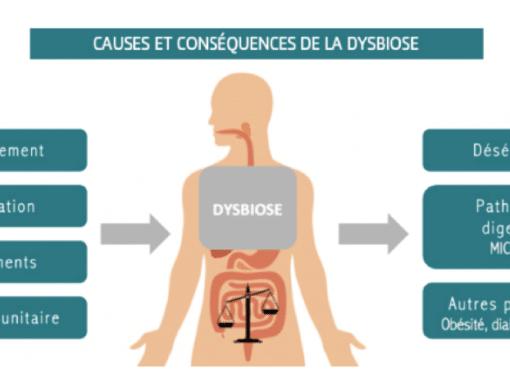 ballonnements et troubles digestifs