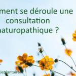 consultation naturopathique